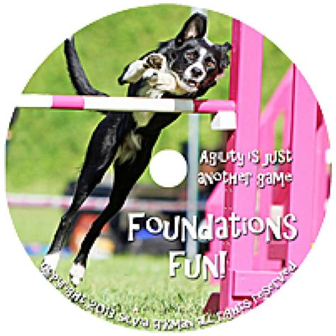 pattern games dvd leslie mcdevitt agility is just another game