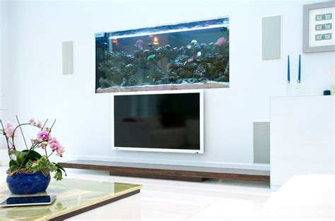 designing home where to put your tv where to place the fish tank in the house
