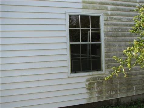 power wash house siding vinyl siding power washing after