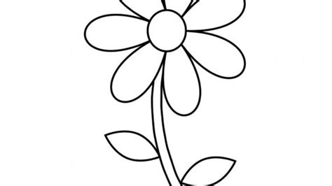 outline of flowers for drawing eletragesi easy flower