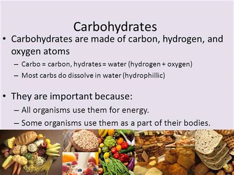 carbohydrates definition carbohydrates definition of a carbohydrate