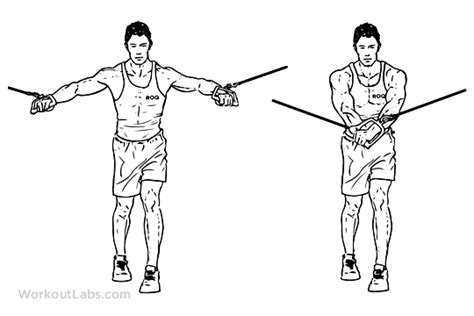 Abs Bench Exercises Standing Cable Crossover Fly Illustrated Exercise