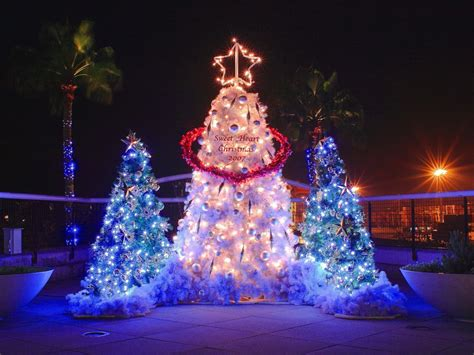 wallpaper christmas lights beautiful christmas tree lights wallpaper hd widescreen
