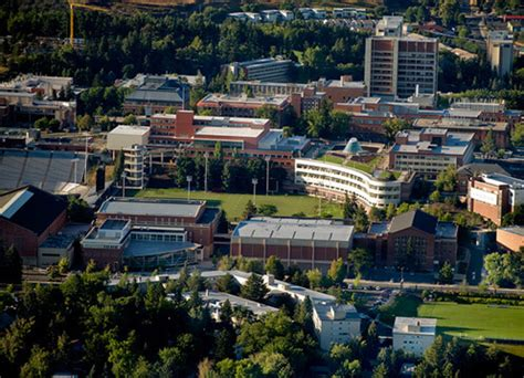 Washington State Mba Admission Requirements by Best Mba Degree Top Ranked Mba Programs Wsu