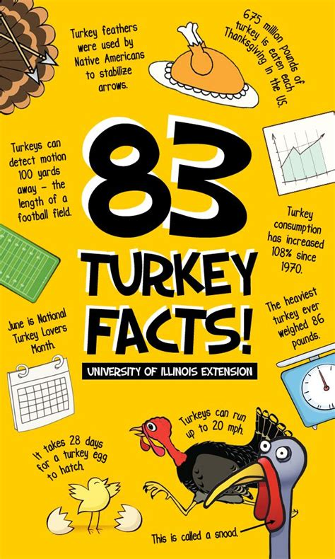 83 fun turkey facts for your amusement this thanksgiving