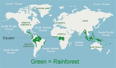 rainforest map rainforest map sustainability