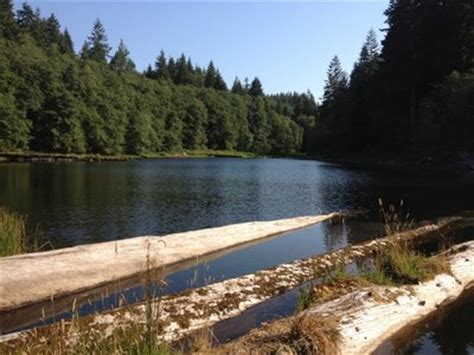 Soapstone Lake Oregon - soapstone lake clatsop state forest oregon hikers