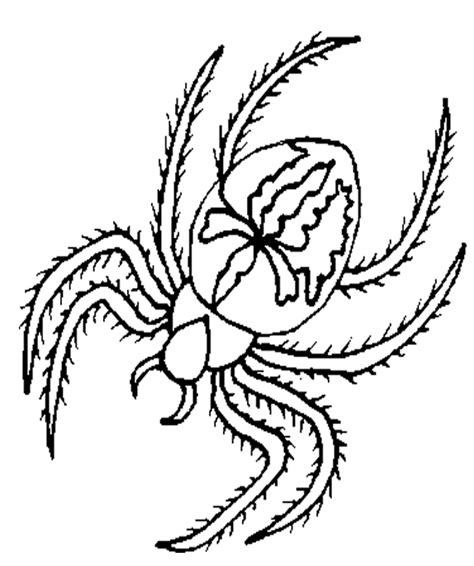 coloring picture of spider
