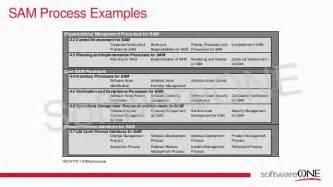 software asset management sam best practice in action