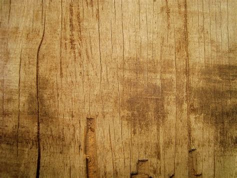 beautiful wood beautiful wood texture background