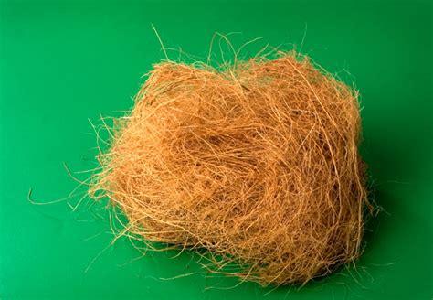 coco coir pilipinas ecofiber corporation premier coco coir products