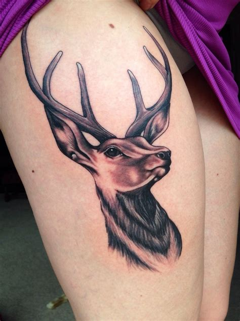 traditional deer tattoo collection of 25 traditional deer design