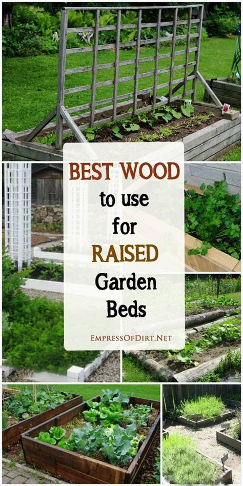 best wood to use for raised garden beds gardens stains