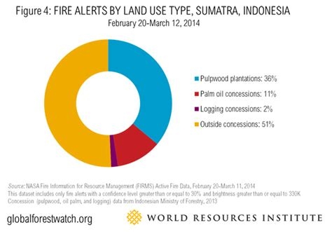 Spike Are Involved In Property Dispute by Sumatra On Burning Spikes In Indonesia