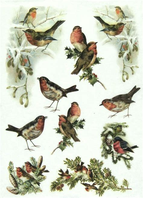 1000 images about decoupage ptaki on crafts