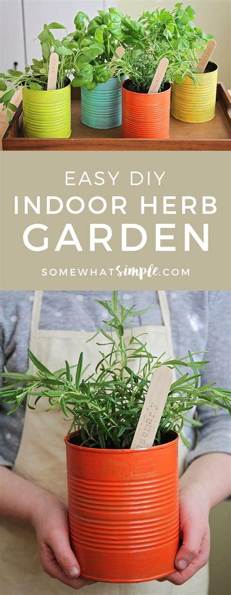 indoor herb garden  simple