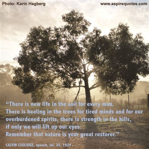 Back To Nature Quotes aspire quotes photographic images with quotes created by