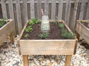 raised beds with pressure treated trend bloguez