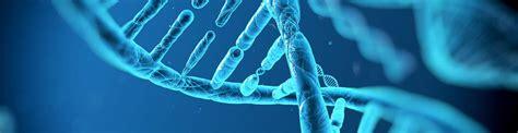 Mba Biotechnology California by Exogen Biotechnology Berkeley Ca Us Startup