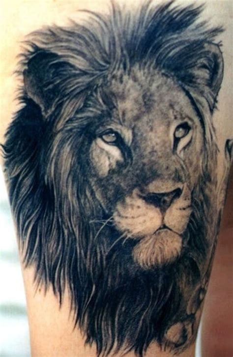 realistic lion tattoo designs 45 awesome tattoos tribal king designs