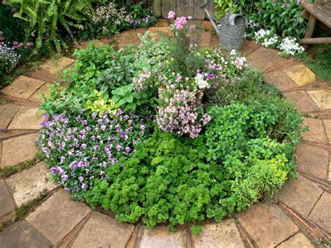 growing herbs how to create an herb circle landscaping ideas and