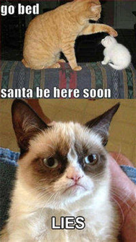 grumpy cat lies