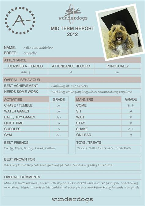 pet boarding report card template 21 images of daycare report card template