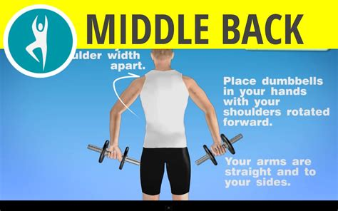 shoulder and middle back workout with dumbbells exercise