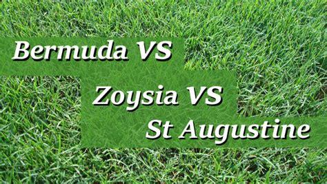 bermuda vs zoysia vs st augustine grass in - Zoysia Vs Bermuda