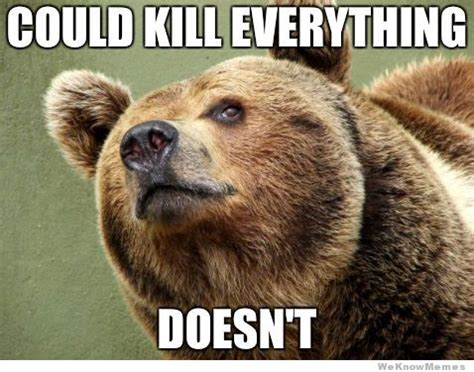 Bear Meme - your favorite memes now in bear form 12 pics weknowmemes