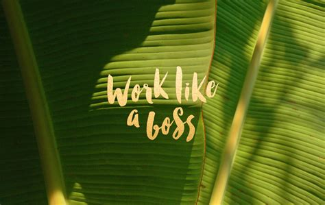 working like a work like a free wallpaper leysa flores