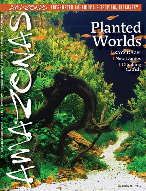 award winning aquascapes amazonas issue preview march april 2016