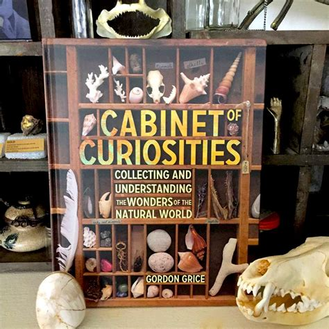 of curiosities book of curiosities a unique book of natural science
