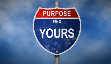 your own finding clear vision in the age of indoctrination books how purpose ignites our leadership potential
