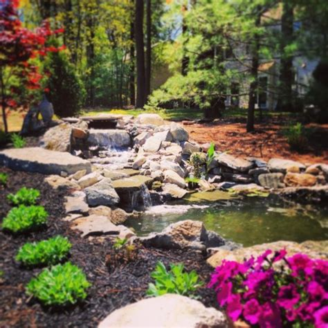 67 cool backyard pond design ideas digsdigs