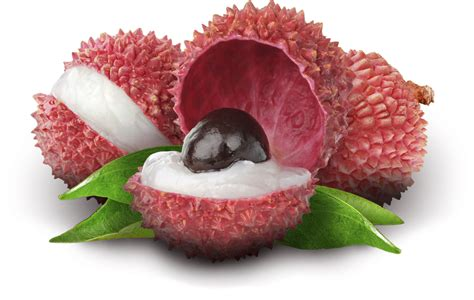 fruit similar to lychee related keywords suggestions for lychee