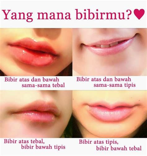 Pelembab Bibir Yang Bagus mohon bantu ya cara ketahui sifat perempuan dari