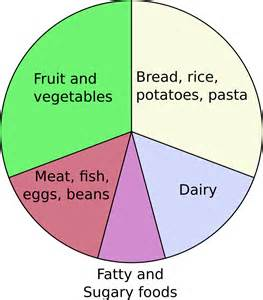 Food Wheel Template by Eatwell Plate