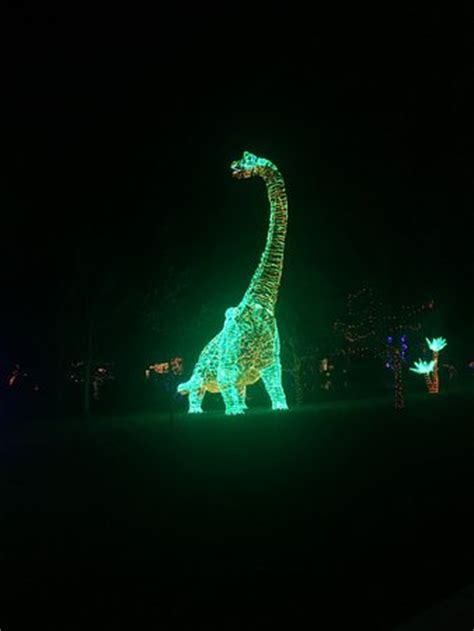 river of lights albuquerque new mexico river of lights picture of albuquerque biological park
