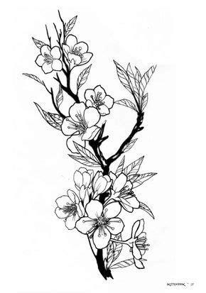 disegni fiori di ciliegio per tatuaggi oltre 25 fantastiche idee su tatuaggi con fiori di