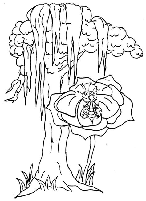 coloring page of louisiana state tree office of the governor kathleen babineaux blanco state