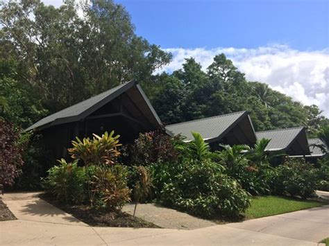 hamilton island bungalow touring the golf course picture of palm bungalows