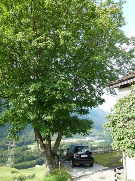 Töff Schweiz by Casa Tavernela