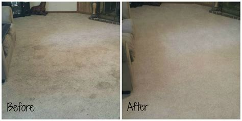 Rug Cleaning Knoxville Tn by Photos Knoxville Carpet Cleaning Residential Commercial