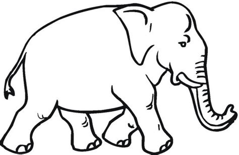 asian elephant coloring page elephant coloring pages color book