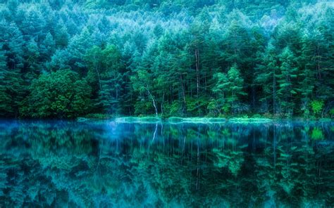 green japanese wallpaper japan trees deep green water reflection wallpapers