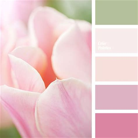 light pink color palette 1000 ideas about beige colour on pinterest beige color