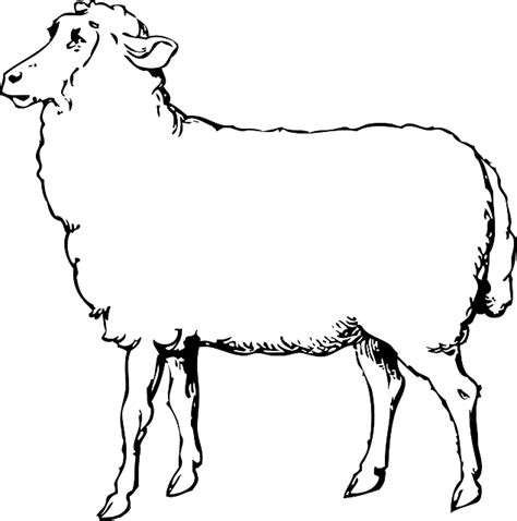 Sheep Animal Black And White · Free vector graphic on Pixabay Lamb Black And White Clipart