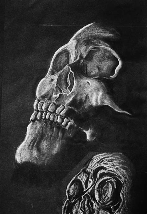 Black And White Chalk Drawings by White Chalk Skull By Ljsummers On Deviantart