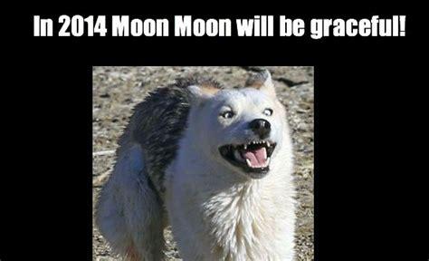 Moon Moon Meme - moon moon dog meme quotes